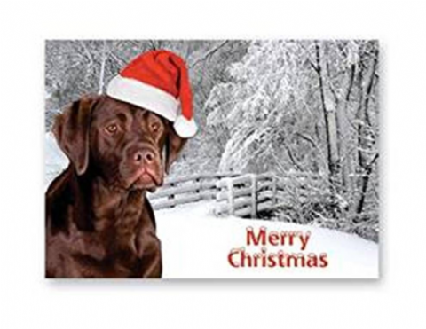 CHOCOLATE LABRADOR CHRISTMAS GREETINGS CARD